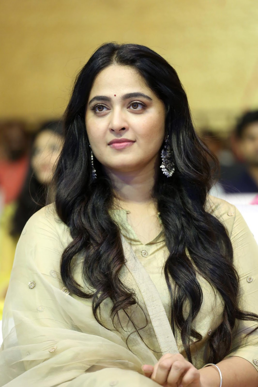 Anushka Shetty Very Chubby Look At Nishabdham Pre Release March 2020