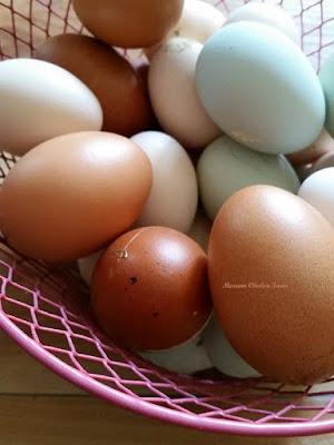 Eggs, 18 lbs of feeds go into 1 dozen eggs