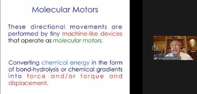 Molecular Motors convert chemical energy to force and torque (Source: Carlos Bustamante, UCB, at APS Far West 2020 meeting)