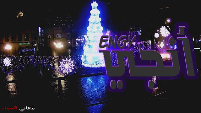 معنى اسم انجي وصفات حاملة هذا الاسم Engy