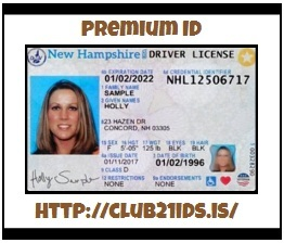 Attain Increased Source Of Information With Fake US Driving License 7