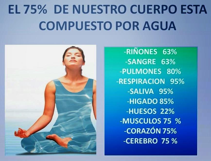 El agua es importante para el ser humano centro tu for Como criar peces para consumo humano