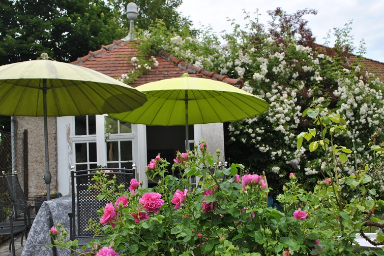 Sitzplatz - Pias Gartenglück
