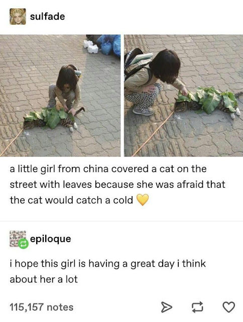 wholesomeness over 9000
