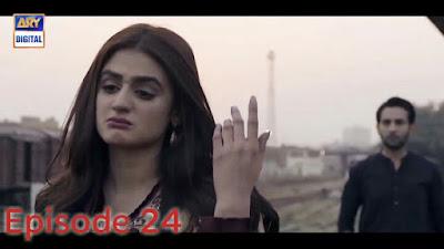 Do Bol Episode 24 ARY Digital Drama