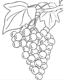 Gambar buah anggur hitam putih