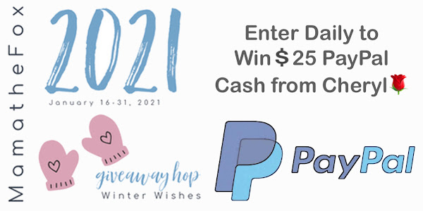 Winter ❄️ ☃️ Wishes Giveaway Hop