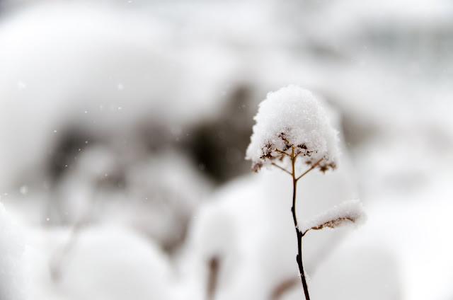 Neige à Trois-Rivières