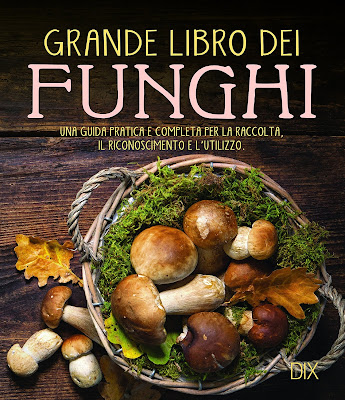 https://www.amazon.it/funghi-completa-raccolta-riconoscimento-lutilizzo/dp/8897427049/?&_encoding=UTF8&tag=siavit0d21-21&linkCode=ur2&linkId=f098bf2fcbd731fdc4c47eb9c7a4757c&camp=3414&creative=21718