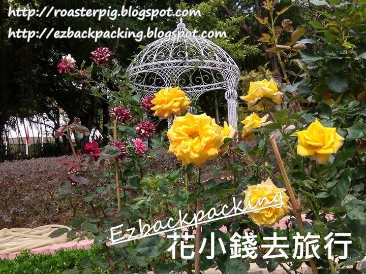 大埔海濱公園玫瑰園