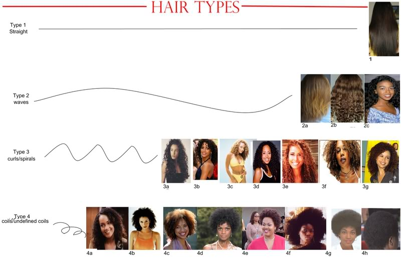 Type 1 Hairstyles: Justifying Shopaholism.... : What Is Your Hair Type?