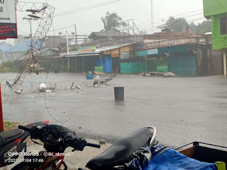Hujan Deras Disertai Angin Kencang, Pohon dan Tower Warnet Tumbang di Rohul