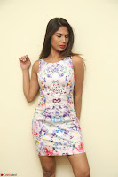 Nishi Ganda stunning cute in Flower Print short dress at Tick Tack Movie Press Meet March 2017 059.JPG