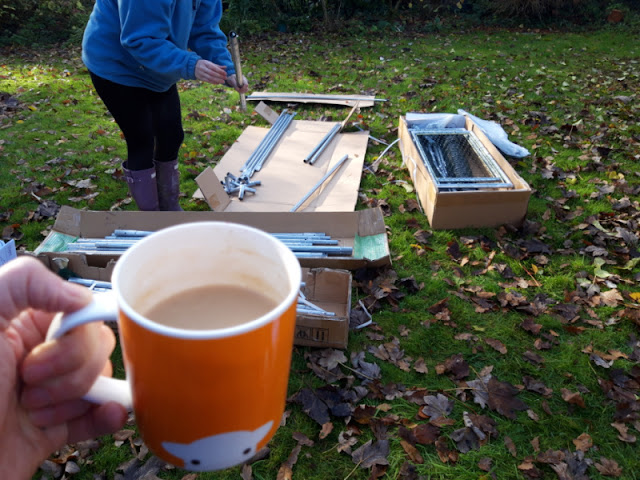 Big daughter is putting the metal duck enclosure together.  I am taking the photo and holding an orange mug of tea