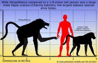 Dinopithecus, Babon Terbesar yang Pernah Ada di Dunia