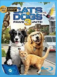 Como perros y gatos 3: ¡Todos a una! (2020) HD 1080p Latino [Google Drive] Panchirulo