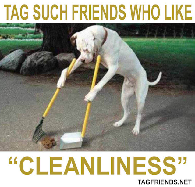 Tag A Friend Who Likes Cleanliness-Tagfriends.net