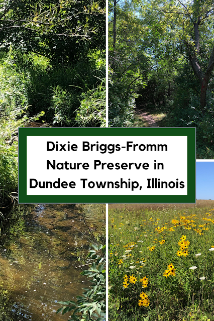 Hiking the Trails of Dixie Briggs-Fromm Nature Preserve in Dundee Township, Illinois