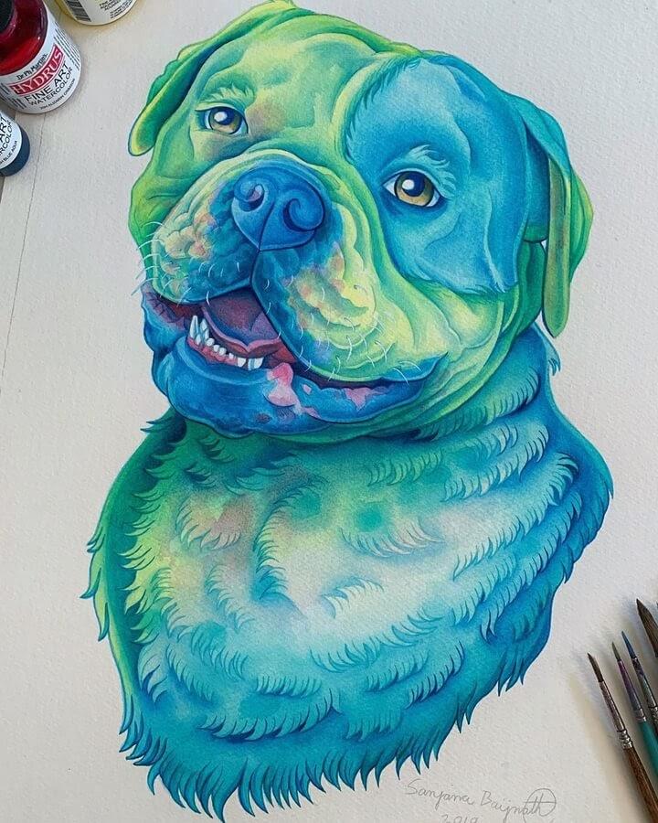 14-Walter-the-American-bulldog-Sanjana B-www-designstack-co