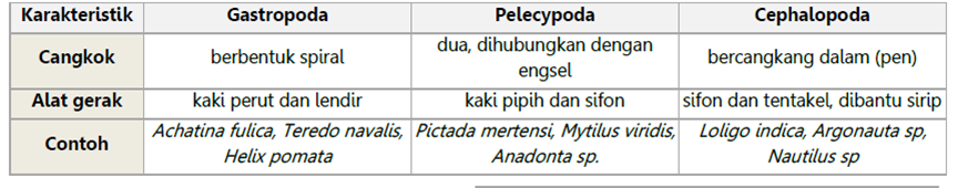 Perbedaan antar-kelas Mollusca