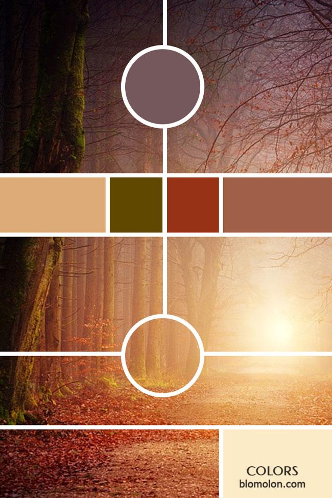 variedad_en_color_moodboards_2