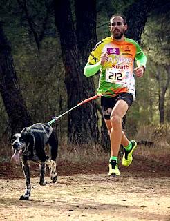 Canicross Aranjuez