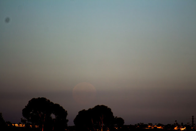 Bright daylight at 1 degree above horizon, 300mm, 1/1000 second (Source: Palmia Observatory)