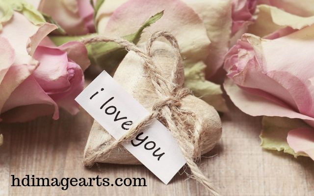 Love Images,Love Collection Images For Whatsapp Dp
