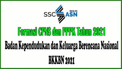 FORMASI CPNS dan PPPK TAHUN 2021 Badan Kependudukan dan Keluarga Berencana Nasional - masbabal.com