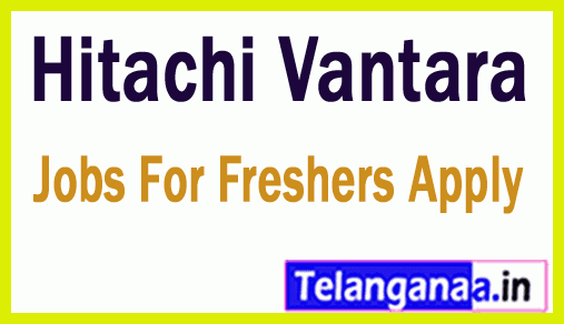 Hitachi Vantara Recruitment Jobs For Freshers Apply