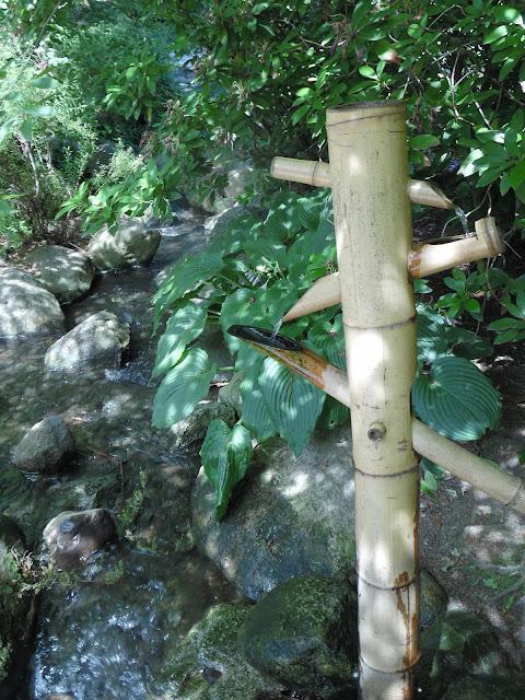 bambusowa przelewka w ogrodzie japońskim