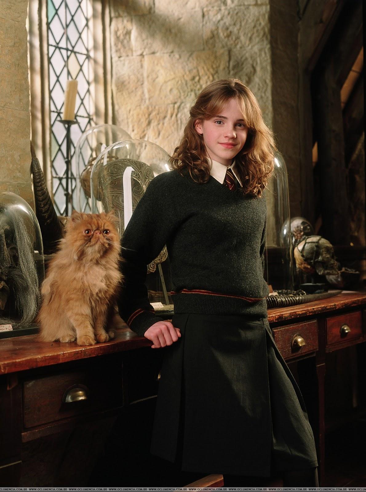 Harry Potter and the Prisoner of Azkaban 2004 [Hindi Dubbed]