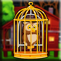 Forest Red Owl Escape