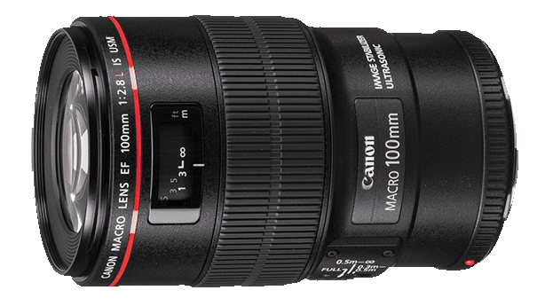 Canon EF 100mm f/2.8L IS USM Macro