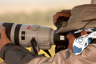 Canon 200-400mm and 600mm prototype lenses first sightings...and the new 5D Mark III?