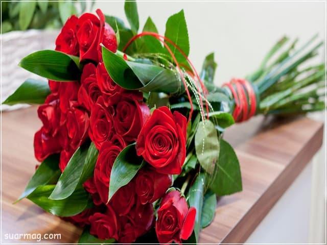 صور ورد - صور زهور 2 | Roses Photos - Flowers Photos 2