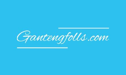 Gantengfolls, Situs Penambah Followers Instagram Gratis
