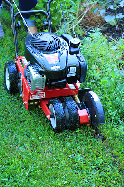 Gas powered edger