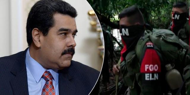El ELN de Maduro: negocios de oro, coltán y células guerrilleras en Venezuela