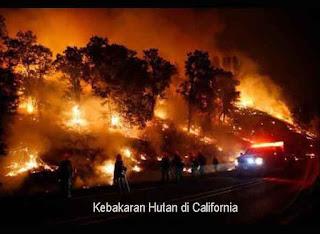 Kebakaran Hutan di California