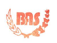 Lowongan Kerja Admin & Sopir Truk di PT. Bhakti Abadi Sejahtera - Semarang
