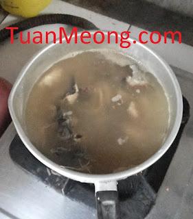 Tips Membuat Wetfood 2
