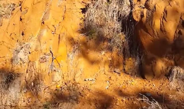 jenis tanah podsolik dan ciri-cirinya