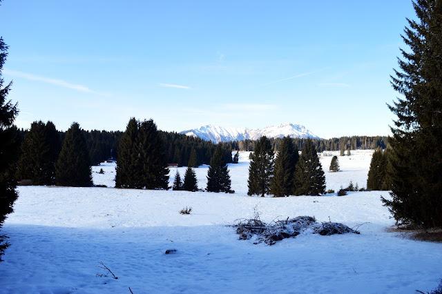 millegrobbe escursioni inverno itinerari ciaspole
