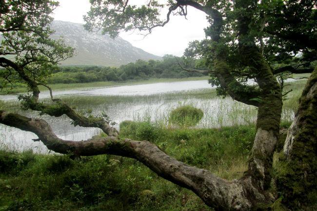 Kylemore Abbey Ireland