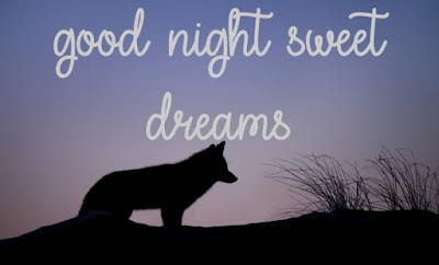 good night dear sister images