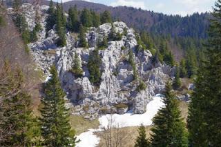 Karren im Velebit (Velinka kosa, Kroatien)
