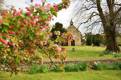 Churchyard in Spring by Chris Gallagher on Unsplash