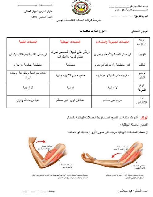ملخص الجهاز العضلي في العلوم للصف التاسع
