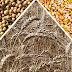 Os três grandes: soja, trigo e milho.
